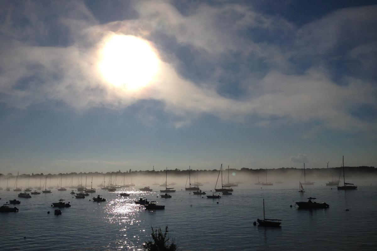 """Sailboats in Marblehead Harbor"" (Photo by Colleen King)."